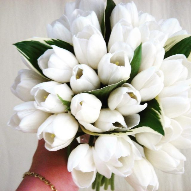 tulips whitewedding springwedding greenroomflowers flowerlove flowers flowerstagram flowersofinstagram wedding weddingbouquethellip